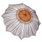 Cream Daisy Umbrella