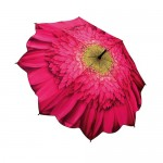 Pink Daisy Umbrella